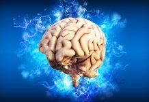 Nevěřte mýtům o mozku. Dnes zboříme 4 nejčastější