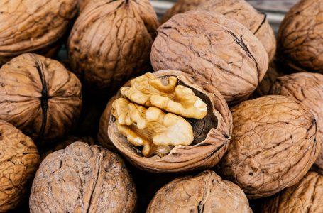Jak správně uchovávat vlašské ořechy