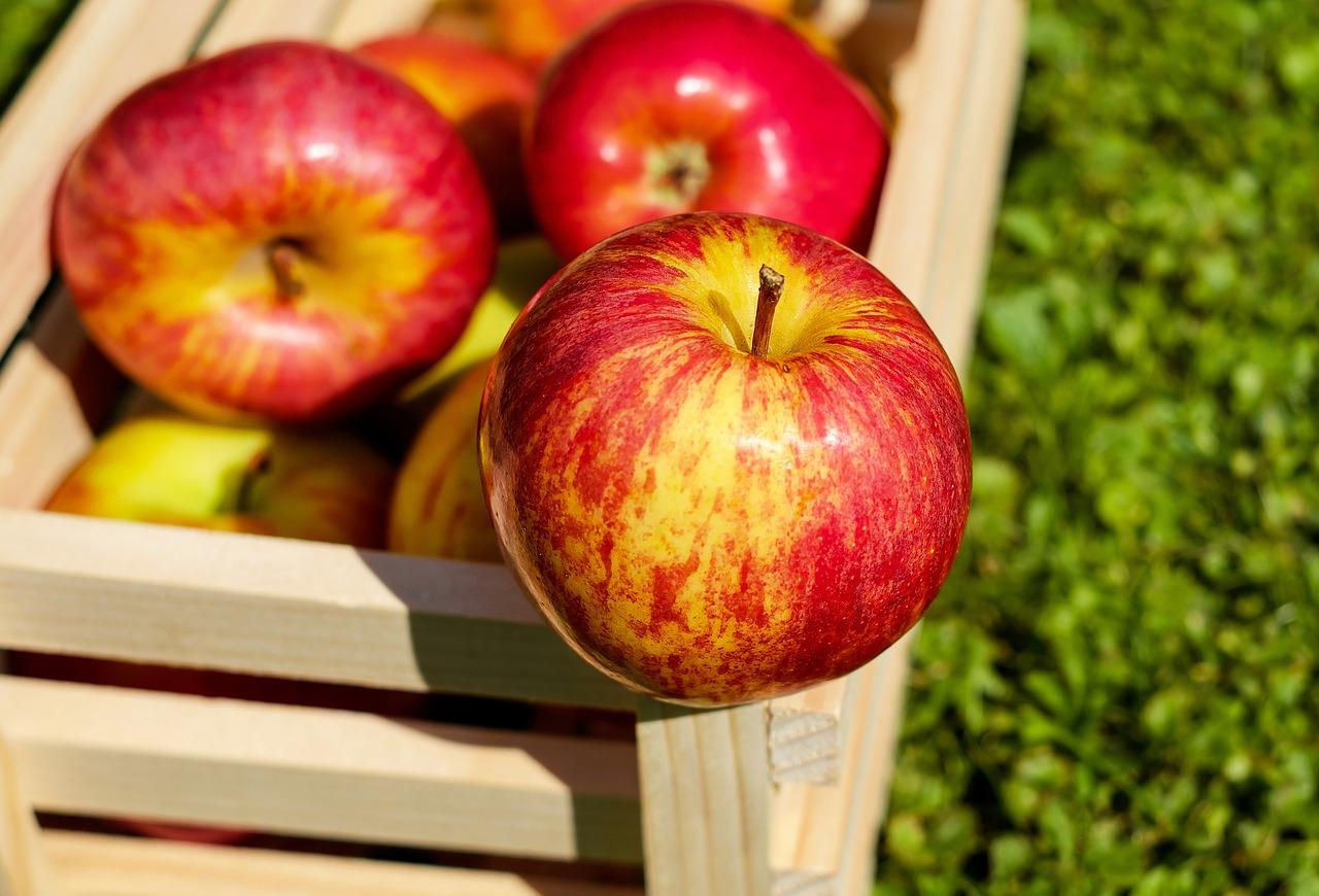 Jak uchovat jablka přes zimu bez chladné komory