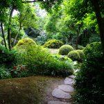 Naplánujte si výlet do Pražské botanické zahrady